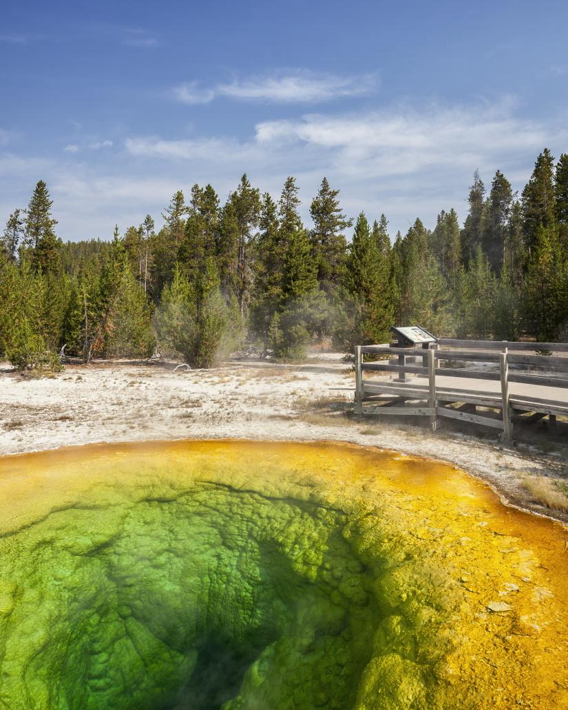53958 colorful geyser yellowstone national park wy 9QSEGU5