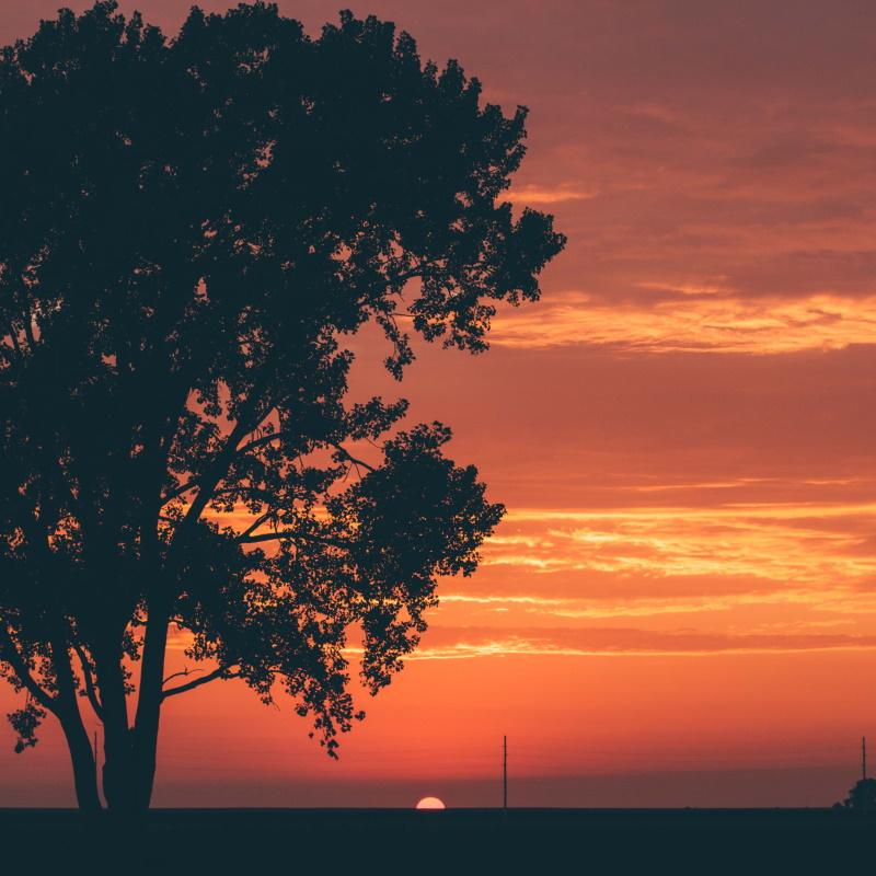 illinois sunsets NSE7QPV