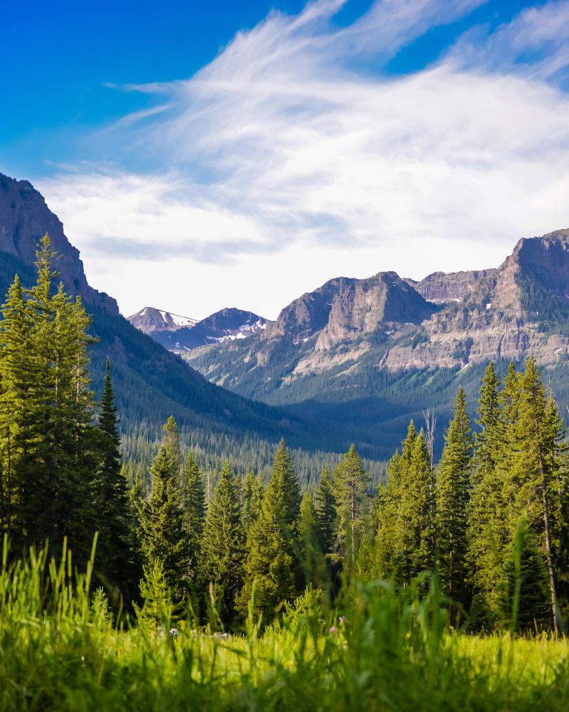 mountain summer landscape in montana S6JMJAH